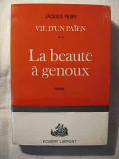 La beauté à genoux (vie d'un païen 2)