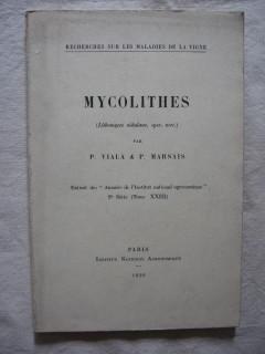 Mycolithes